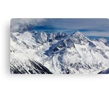 Mountains in Garibaldi Provincial Park Metal Print