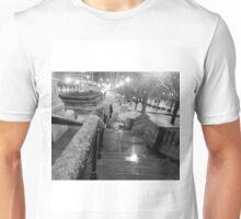 michigan ave Unisex T-Shirt