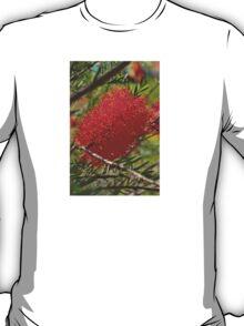 Red Bottle Brush T-Shirt