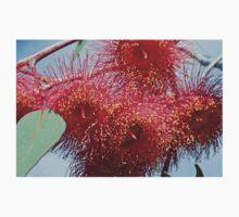 Red Gum Tree flower Kids Tee