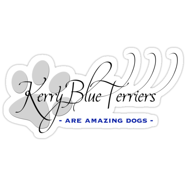 Kerry Blue Terrier - Amazing Dogs by Helen Green