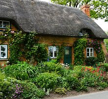 A Cottage with Flowers by hootonles