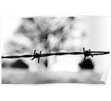 Barbed Wire Winter Poster