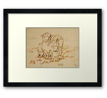 Sheep and Lamb drawing Framed Print
