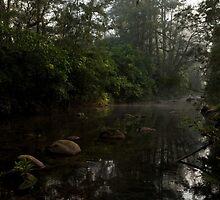 Kangaroo Valley - Peacefull Creek view 01 by Timothy Kenyon