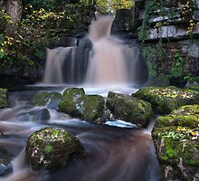 Scar House Waterfall by English Landscape Prints