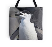 "Chinstrap Penguin ~ ""The Geologist"" Tote Bag"