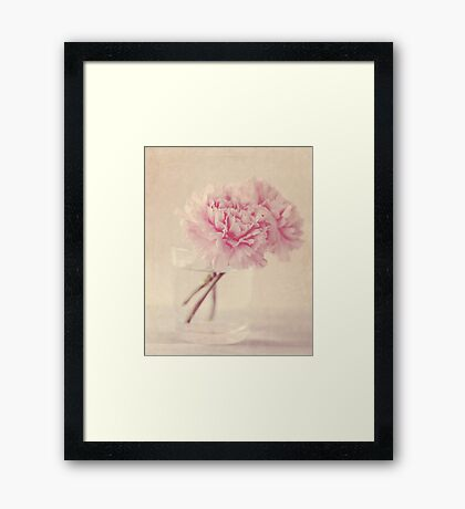 Textured Carnations Framed Print