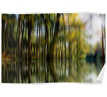 The Flooded Forest Poster