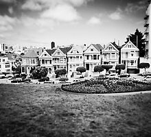 The Painted Ladies B/W by Sarah Van Geest