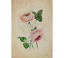 Peach, Pink & Gypsophila #2 Floral Painting Photographic Print