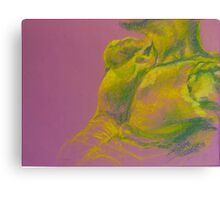 Torso - Male: Figure Study Canvas Print