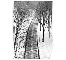 Road Beneath Winter Wood Poster