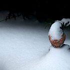 Snowm! by Billlee