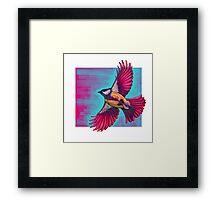 Sparrow in Flight Framed Print