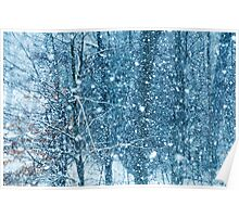 Snow Falling II Poster