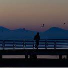 The lone passenger (il passeggero solitario), Lido di Tuoro, Lago Trasimeno, Umbria, Italy by Andrew Jones
