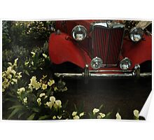 RED MG Vintage Garden Poster