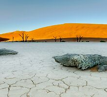 Deadvlei Namibia Africa by Beth  Wode