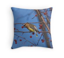 Waxwing On Canvas Throw Pillow
