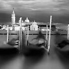 Gondolas at Dawn, St Marks, Venice, Italy by paulsborrett