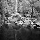 Erskine Falls, Near Melbourne, Victoria, Australia by paulsborrett