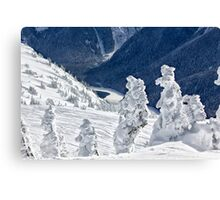 Ice trees 2 Canvas Print