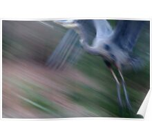 Photographic Painting of a Grey Heron Poster