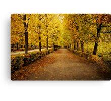 Schonbrunn Palace Gardens - Vienna Canvas Print