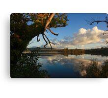 Lough Eske Shore Canvas Print