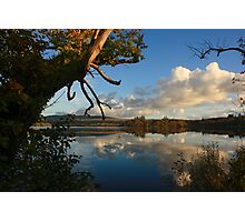 Lough Eske Shore Photographic Print