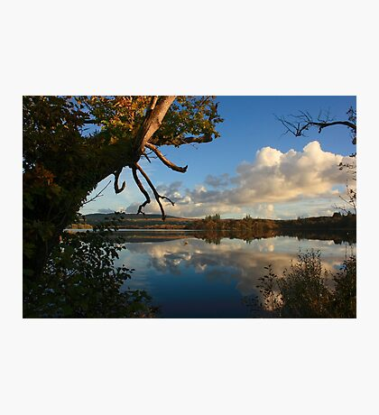 Lough Eske Shore Photographic Print