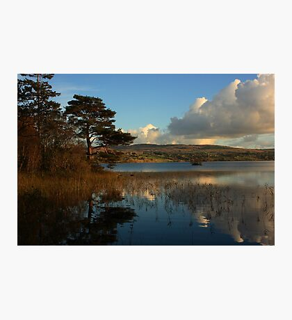 Lough Eske Scene Photographic Print