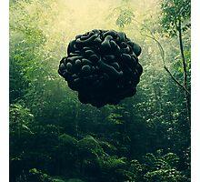 Blacks Photographic Print