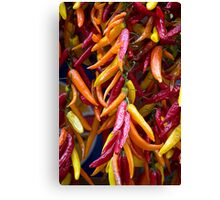 Dried Chillies Canvas Print