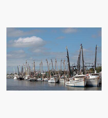 The Shrimp Fleet  Photographic Print