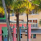 Swaying Palms and Tropical Colors  by John  Kapusta