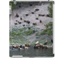 Bisons in the  wild west iPad Case/Skin