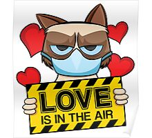 Grumpy Cat - love is in the air Poster