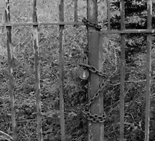 Old chained gate by jaoxley