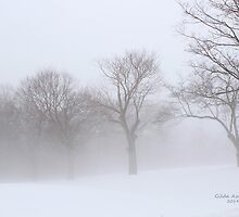 Foggy Trees by Gilda Axelrod