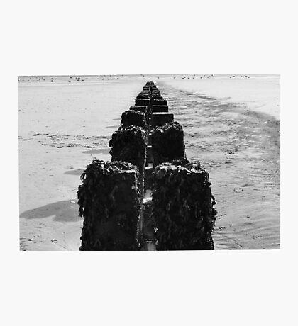 Break water at Bridlington Photographic Print
