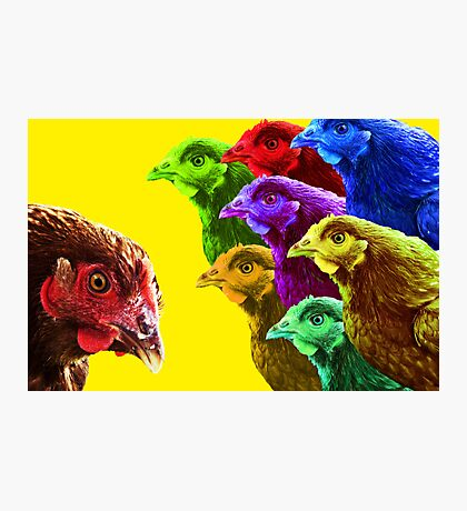 Chick fever II Photographic Print
