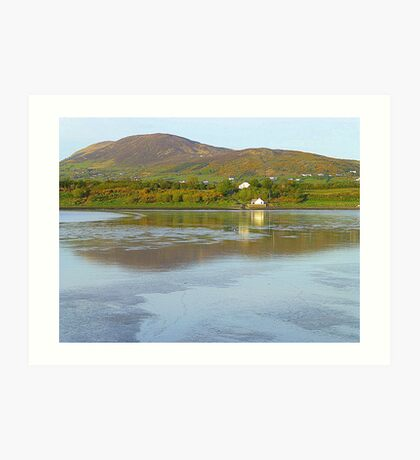 Irish Cottages In Donegal Art Print