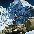 """The Ascent""  by Rob Schouten"