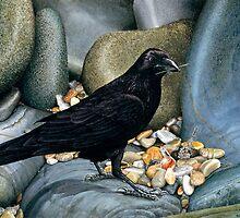 """Corvus Delicti"" by Rob Schouten"