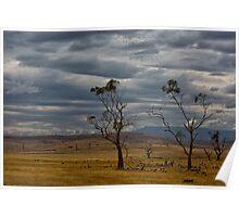 Australian summer sky Poster