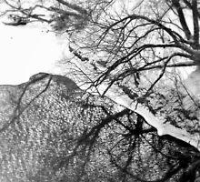 Winter Shadows by Valentino Visentini