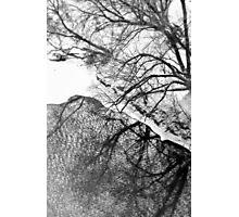 Winter Shadows Photographic Print