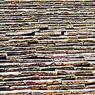 Roof Tiles  by Ethna Gillespie